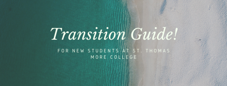 File:Transition Guide.png